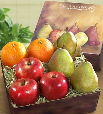 Arbor Harvest Fruit Sampler Box - gluten free