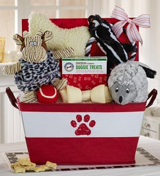 Pampered Pooch Toys and Treats Basket
