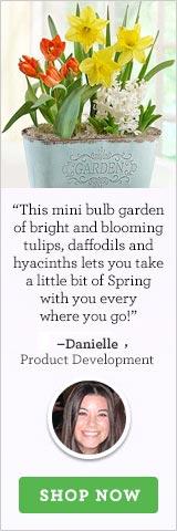 Spring Country Bulb Garden