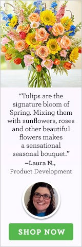 Spring Sensation™