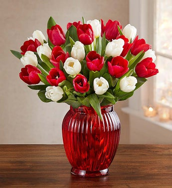 Holiday Tulips, 30 for $30