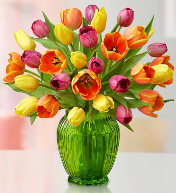 Mother's Day Tulips, 30 for $30
