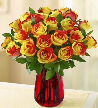 Fall Kaleidoscope Roses, 12-24 Stems