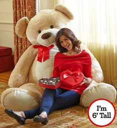 Beary Big Bear with Chocolate