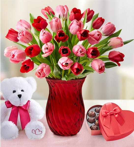 Sweetest Love Tulips with Red Vase, Bear & Chocolate
