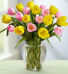 Pink & Yellow Tulips + Free Vase
