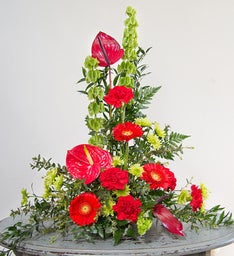 Tropical Sympathy Arrangement