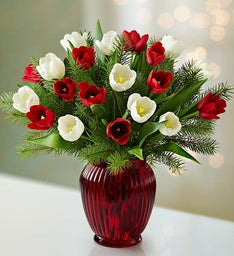 Holiday Tulips, 20 Stems + Free Vase