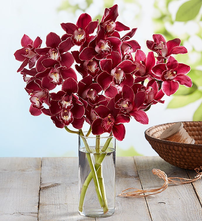 Fresh Market Orchid Bouquet
