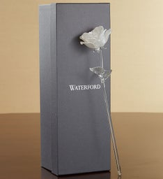 Waterford® White Pearl Rose For Sympathy