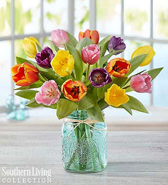 Assorted Tulips by Southern Living®
