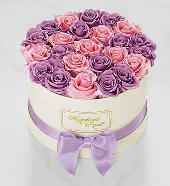 Magnificent Roses® Preserved Lavender and Pink Duo Roses