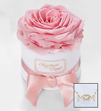 Magnificent Roses® Preserved Pink Rose and Necklace