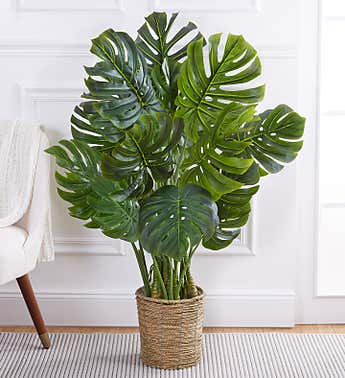 Faux Monstera Tree 47""