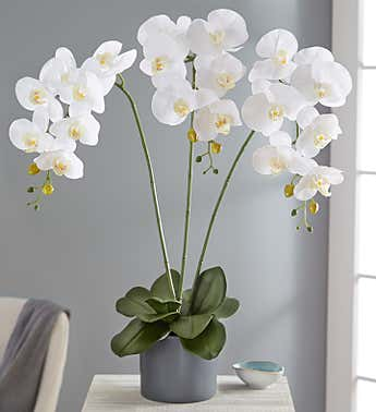 Faux White Orchid