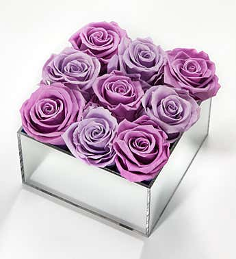 Magnificent Roses® Preserved Purple Reflection