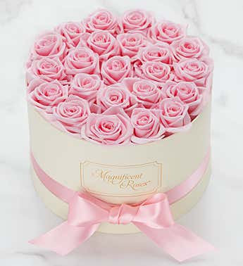 Magnificent Roses® Preserved Pink Perfection
