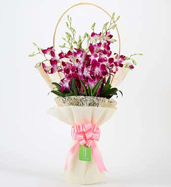 Simply Sweet Orchids