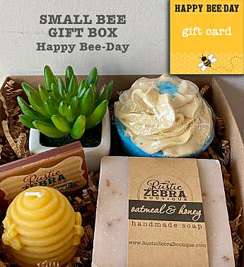 Happy Bee Day Succulent Spa Gift Box
