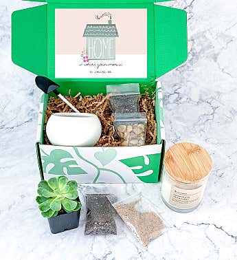'Home Is Where Your Mom Is' Mother's Day Succulent Gift Box